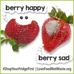 Stop Food Waste